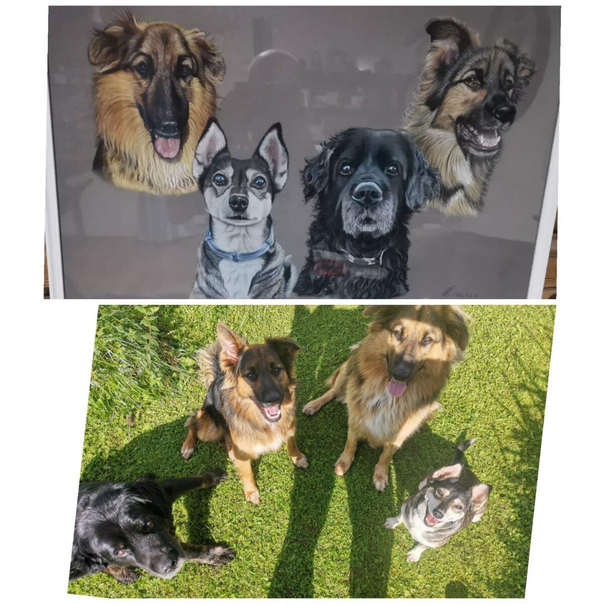 Indreku koerad maalil ja päriselus
