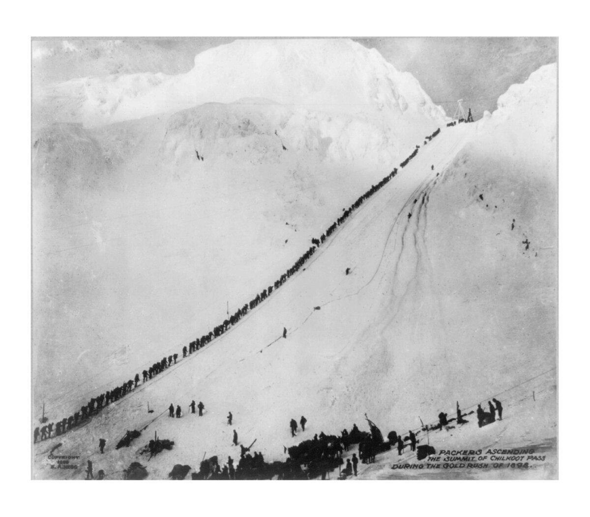 """Фото клондайкеров, поднимающихся на вершину перевала Чилкут во время """"золотой лихорадки"""" 1898 года"""