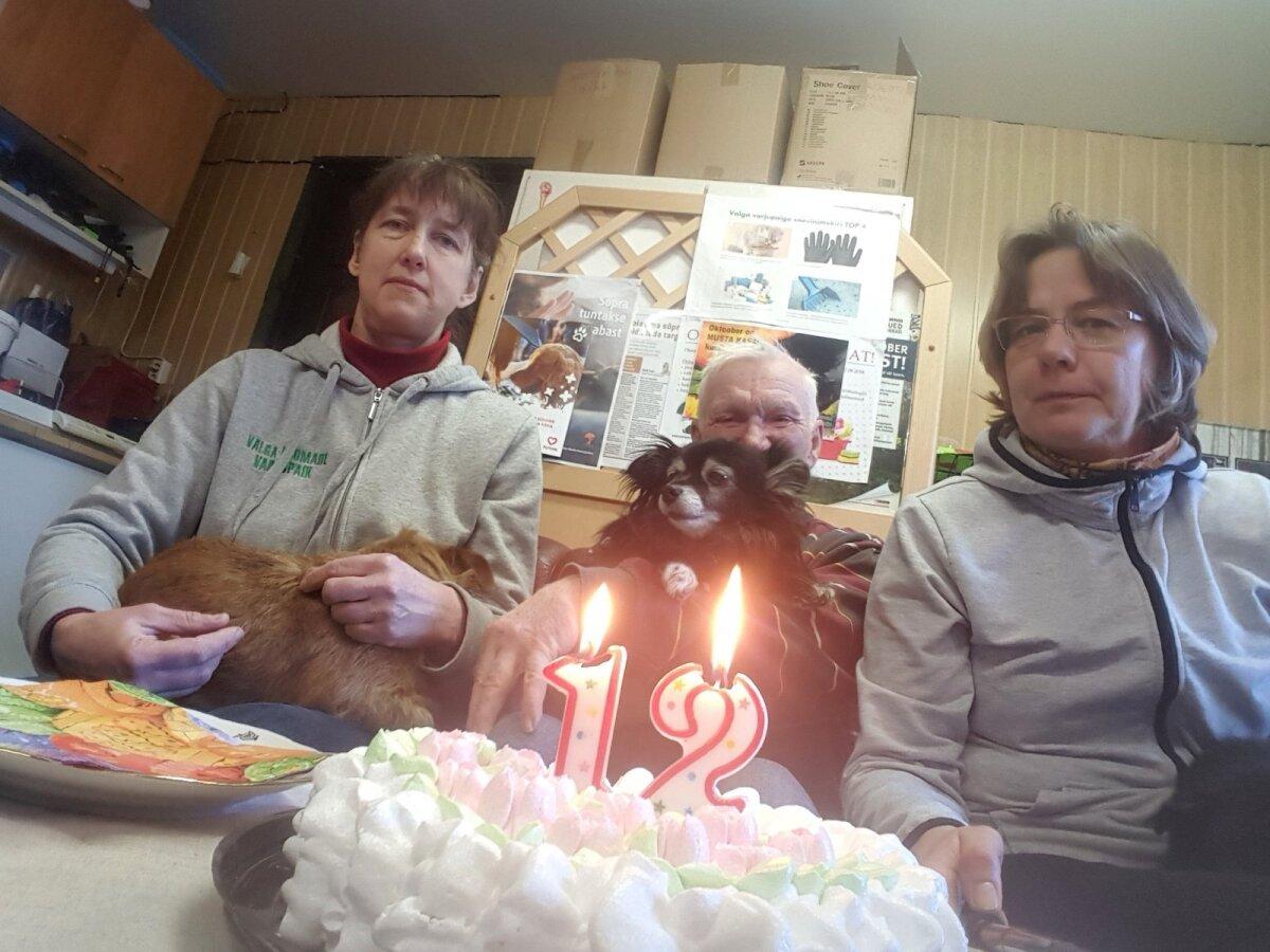 Valgas söödi tänase sünnipäeva puhul ka torti.