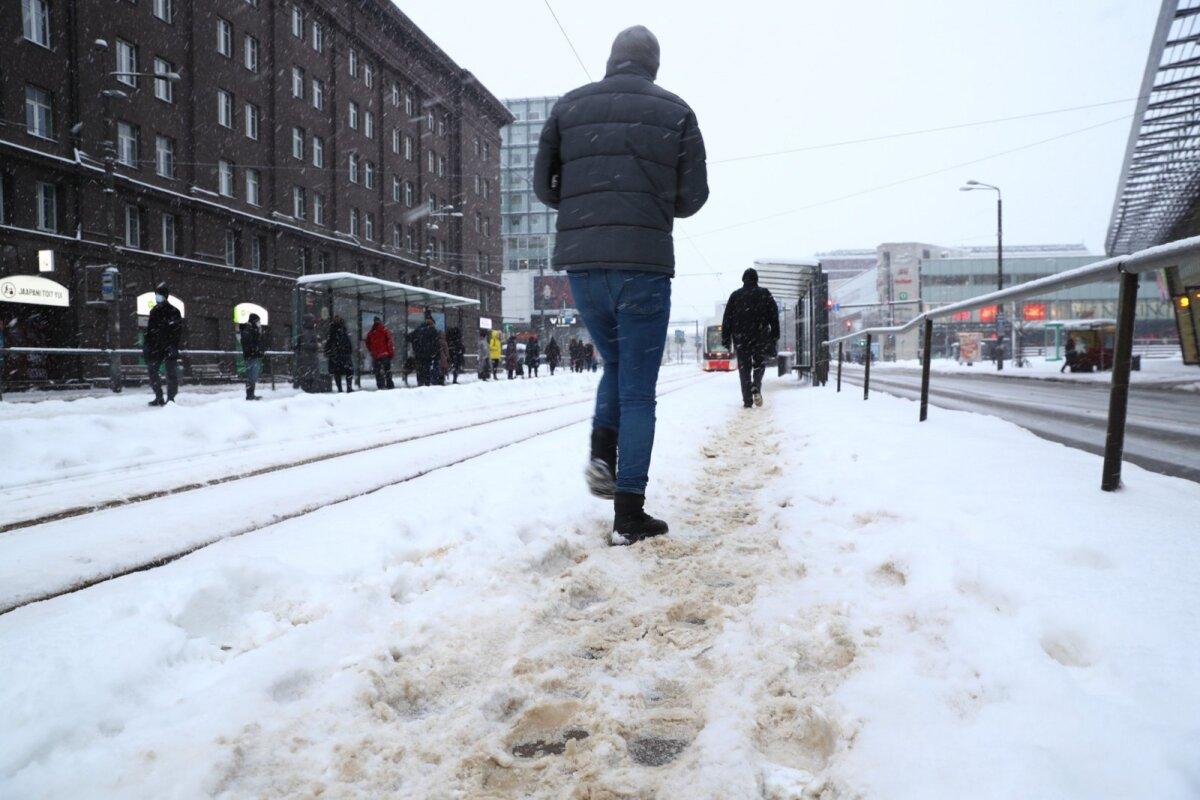 Hobujaama trammipeatus