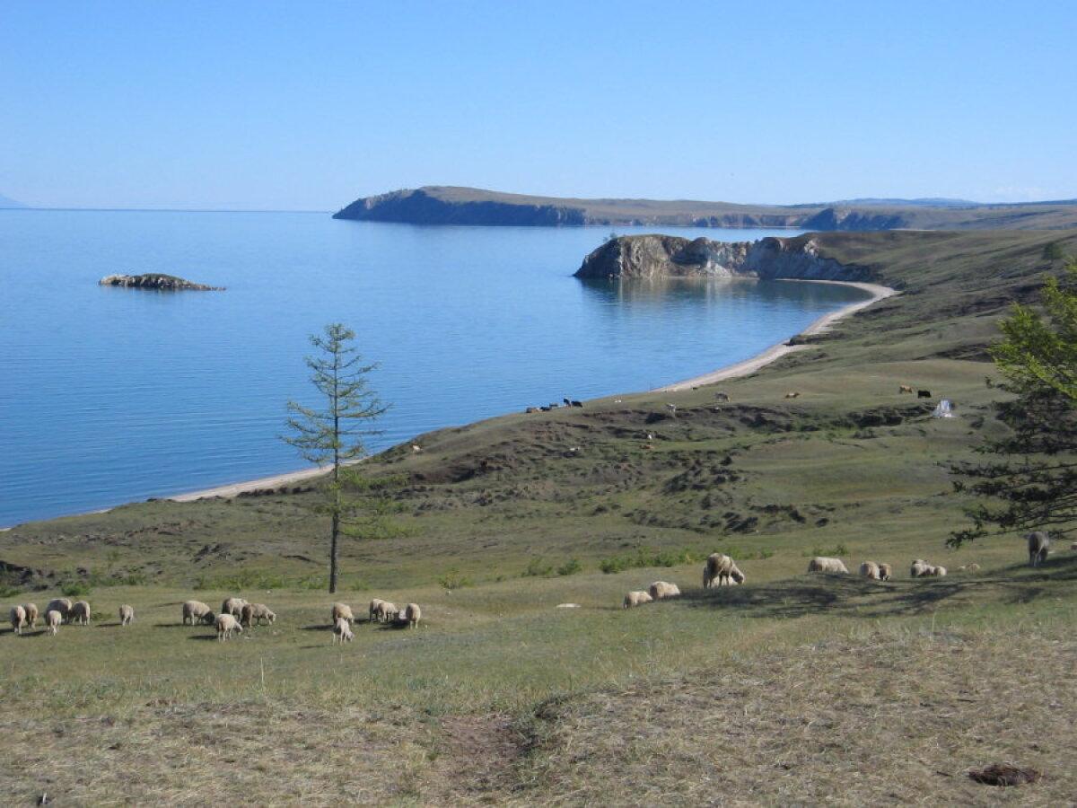 Baikal, Olhoni saar.