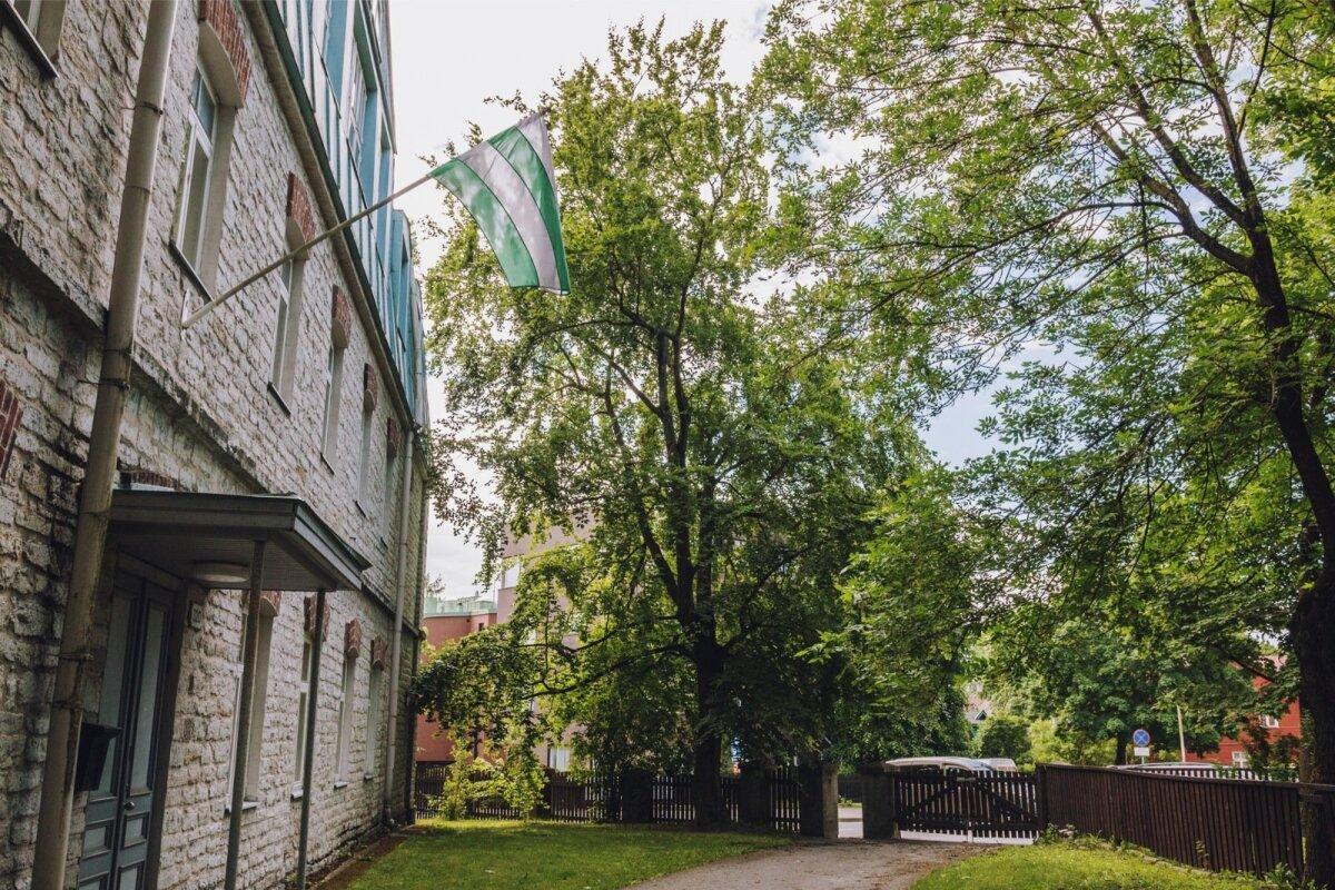 Asukoht: Pärnu mnt 120, Nõmme Muusikakooli hoov
