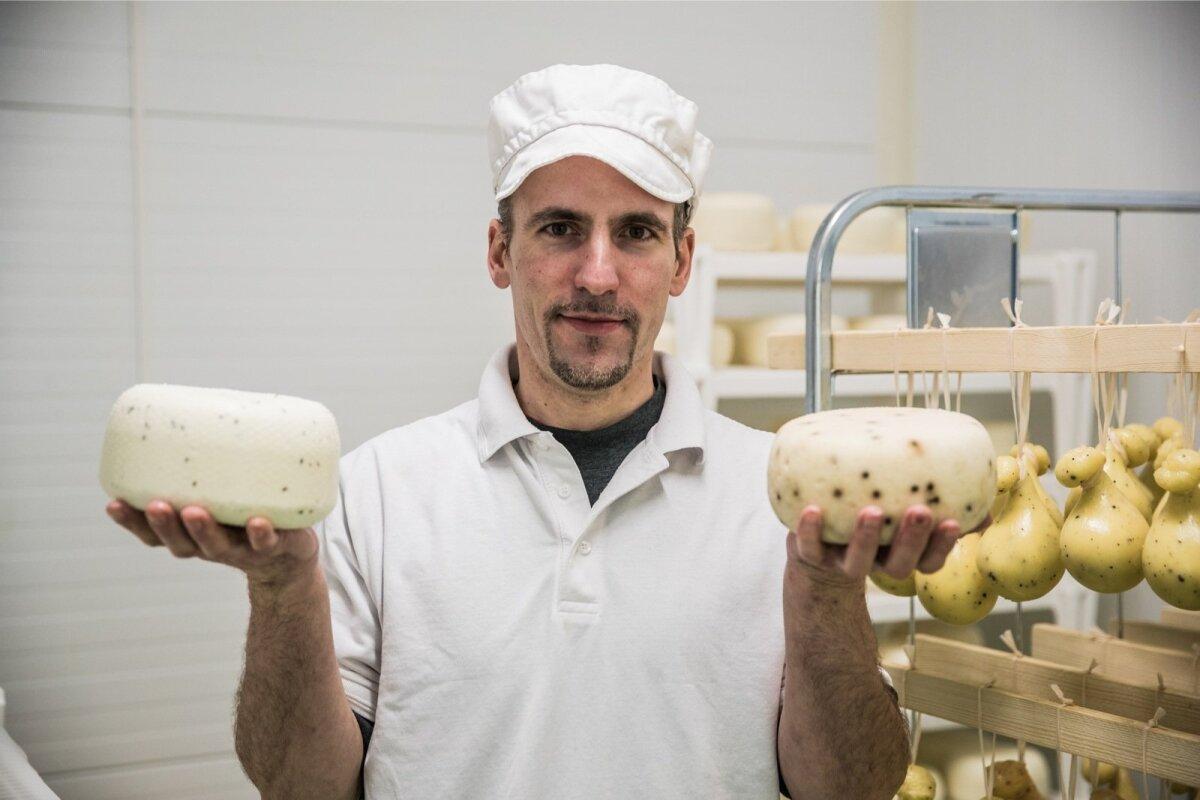 Viinamärdi talus tehakse lambapiimast juustu - Denis Pretto