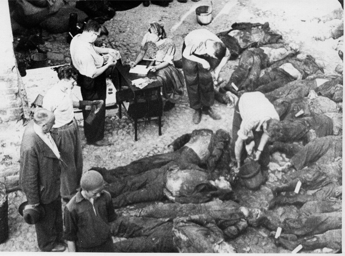 NKVD ja NKVD poolt tapetute väljakevamine Tartu vanglas 15 ja 16 juulil 1941.  Siin oli 193 surnukeha, enne oma lahkumist 8. juulil 1941 lasti maha vähemalt 199 arreteeritut