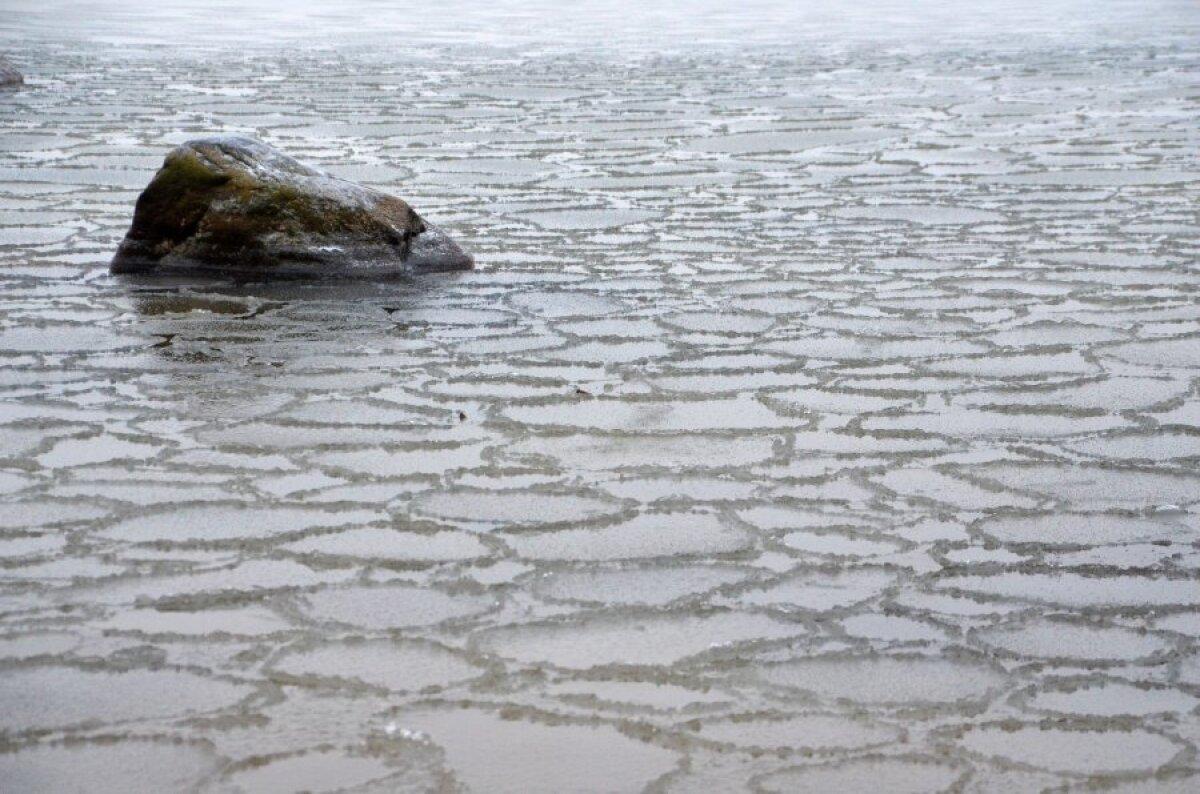 Vaiksemate lahesoppide kaldal matkates võib aga juba õrna taldrikjääd märgata.