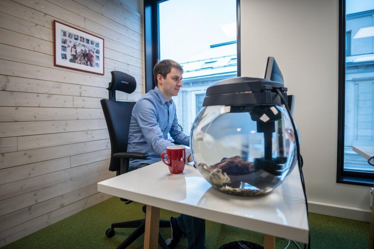 Andrei laual on akvaarium juba pea 5 aastat.