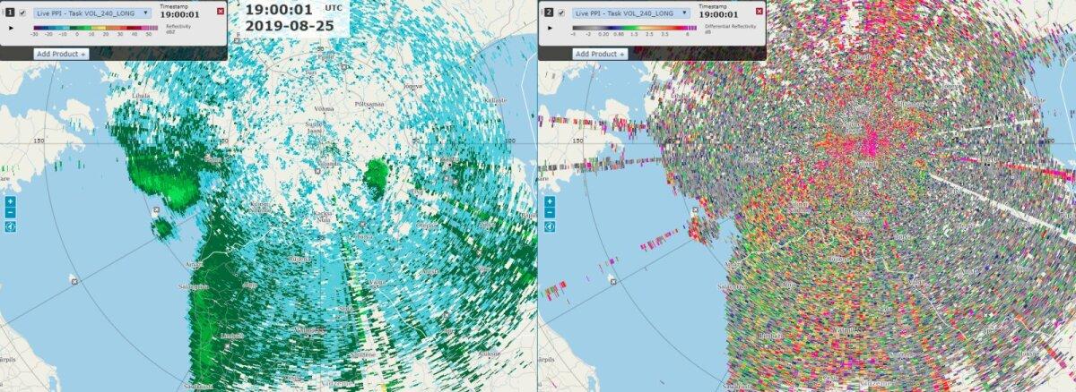 Lindude radaripilt: 25. augusti õhtupoolikul on linnud Liivi lahe ümbruses just lendu tõusnud ja suunduvad lõuna poole.