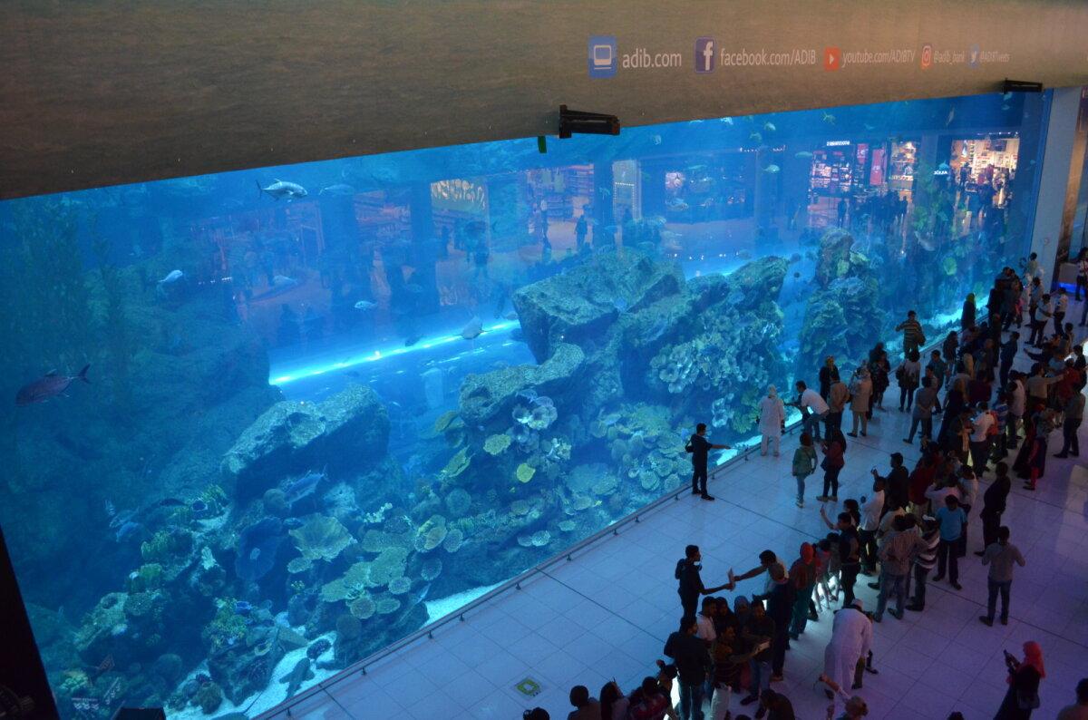 Kogupindalalt maailma kõige suurem kaubanduskeskus Dubai Mall, mis sisaldab lisaks lugematule arvule poodidele ka akvaariumit ja veealust loomaaeda, kus on üle 300 erineva mereloomaliigi, sealhulgas ka haid ja raid.