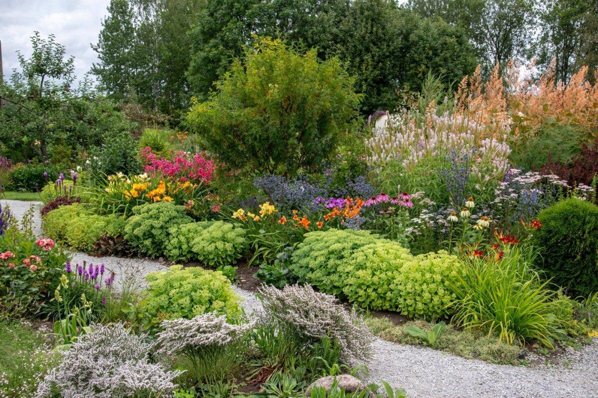 Maakodu, Fööniksi aed, Jaagu talu, Orissaare, Saaremaa, Jelene Sakel