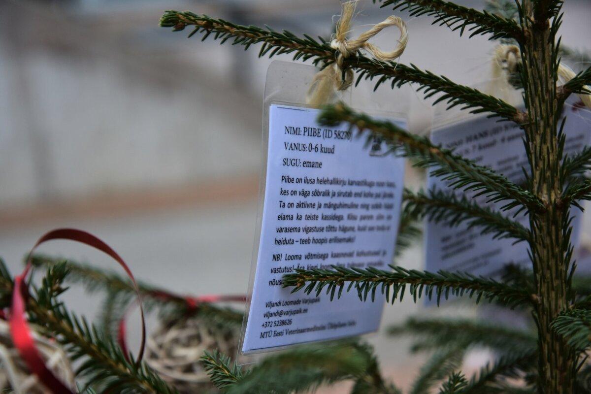 Loomade jõulupuu Viljandis