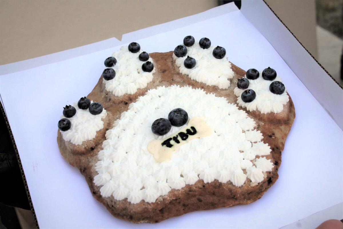 Tibule valmistatud tort