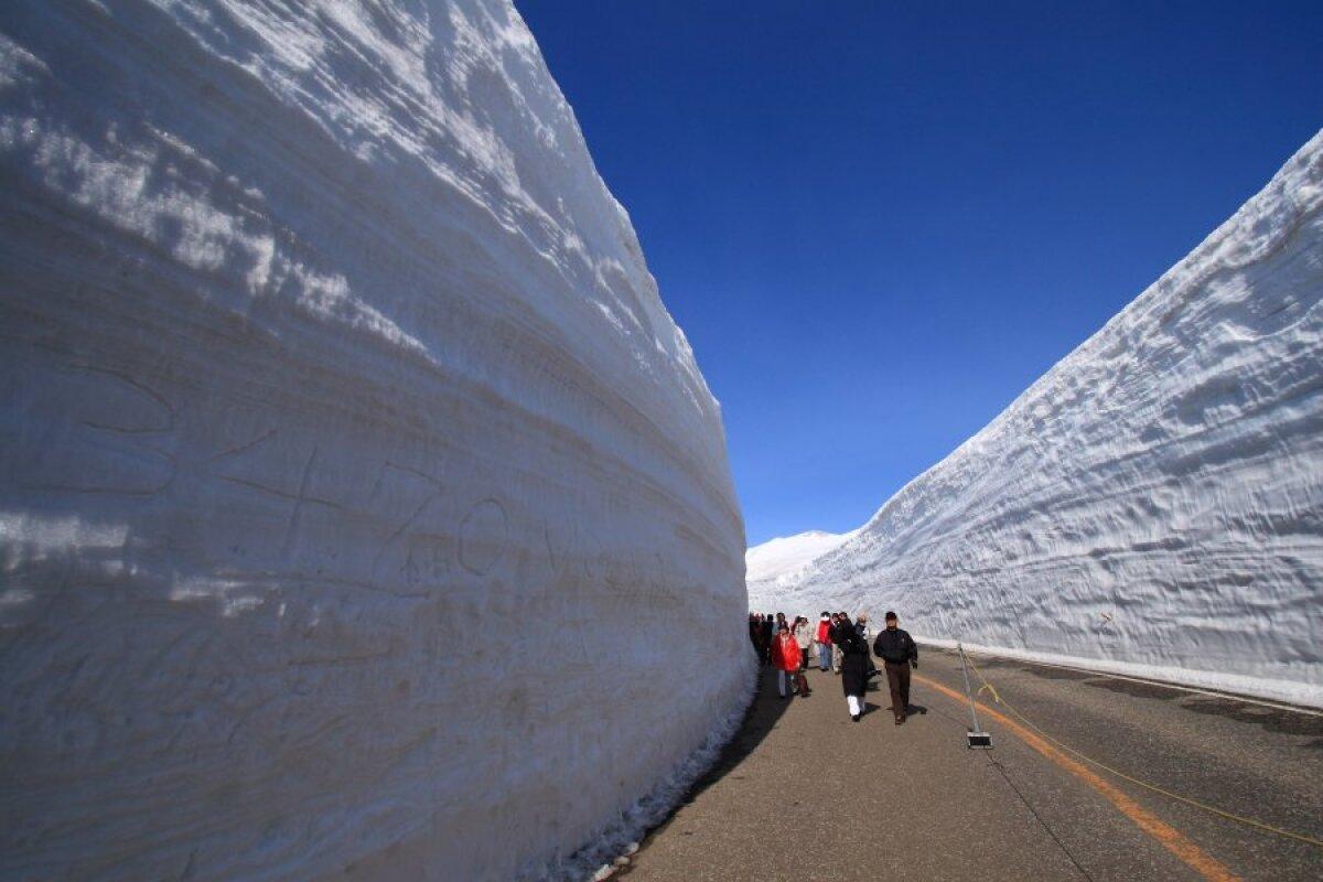 Lumekoridor 2008. aastal.