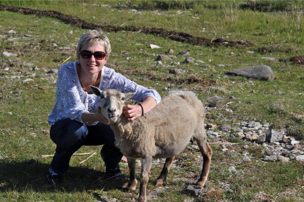 Metsalehe toimetaja Kristiina Viiron on viimasel kuul tegelnud suurprojektidega nagu Rail Baltic ja Est-For. Nende kahe vahel õnnestus tal kuidagi vestluseks peatada ka üks lihtne lammas.