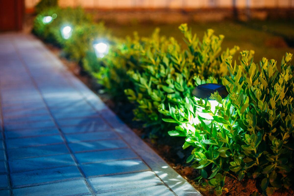 Talvise aia valgustamiseks päikeseenergiat kasutavaid lampe meie kliimavöötmes ei kasutata.