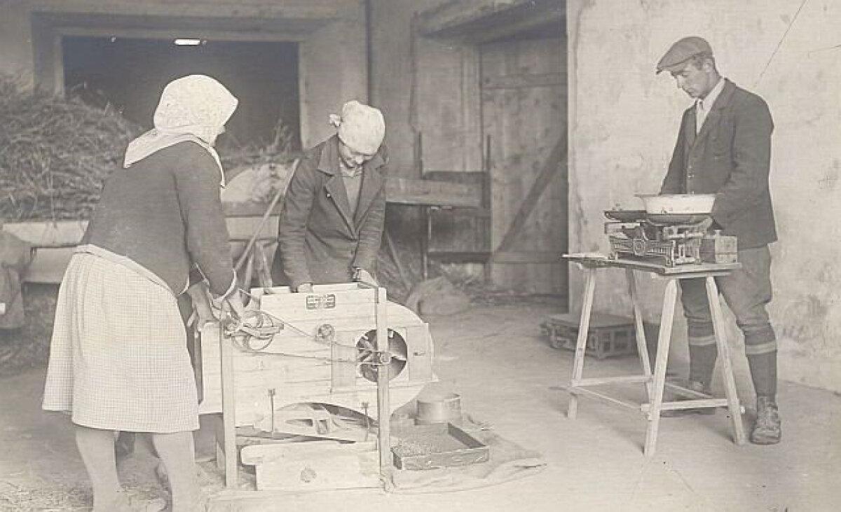 Proovide puhastamine ja kaalumine 1927. aastal.