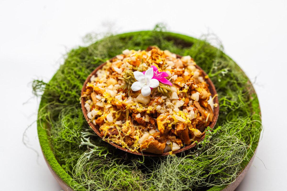 Võistlustöö kategoorias isutekitaja: suitsutatud kukeseene tartalett juursellerikreemi, munakollase-flakey, marineeritud kuusevõrsete ja röstitud seedermänniseemnetega.