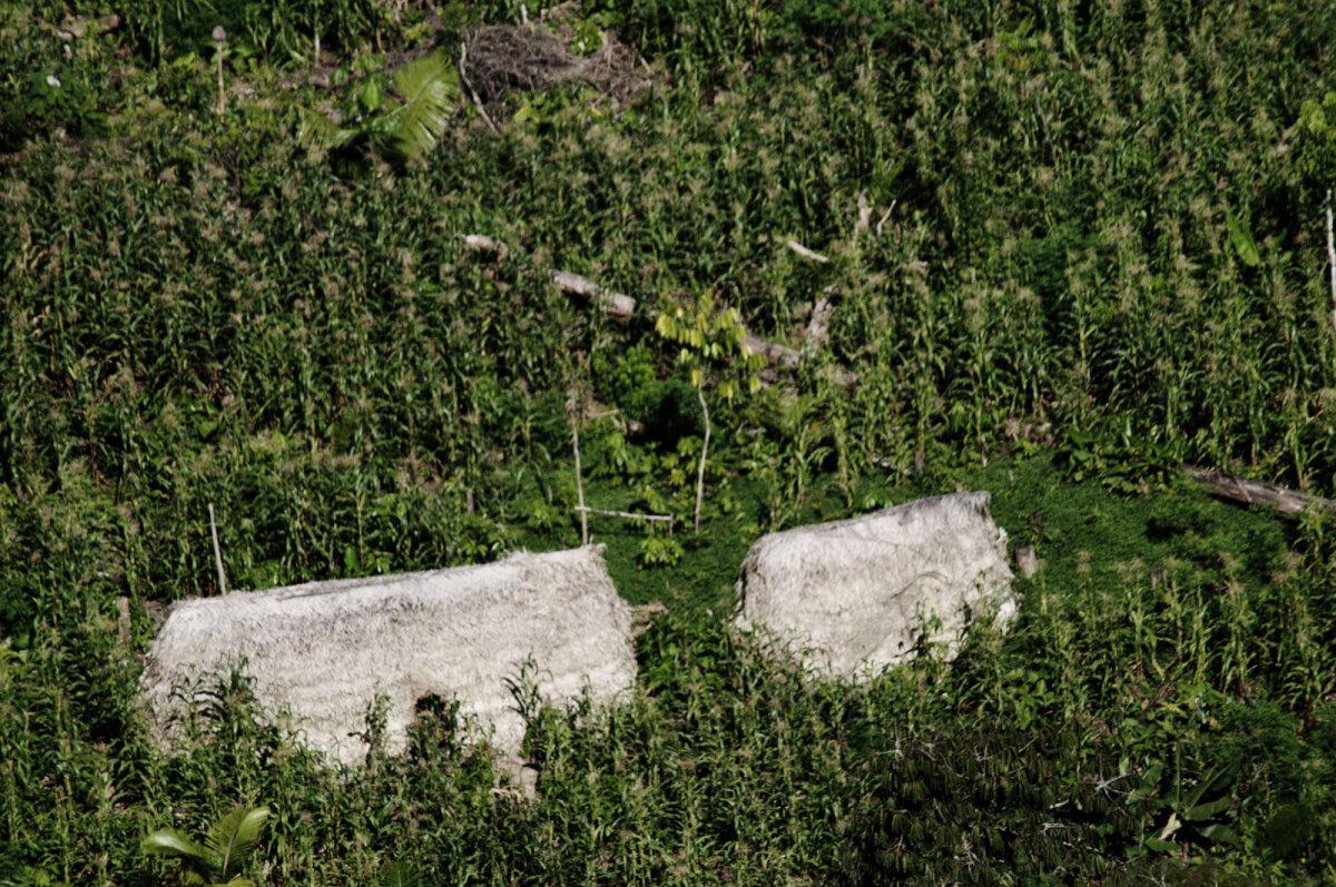 Javari jõe orus elavate pärismaalaste hütid õhust pildistatuna.