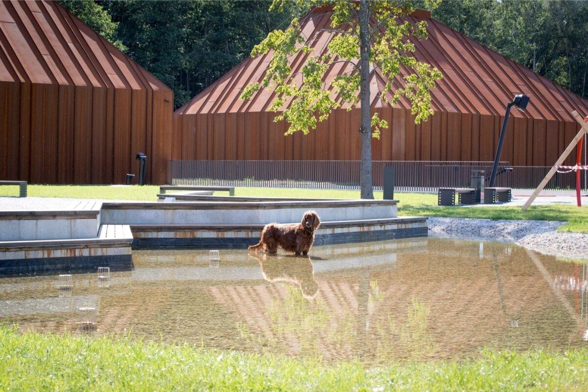 Filmimuuseumi ehituse projektijuhi koer Glory, kes on kogu ehitusel silma peal hoidnud.