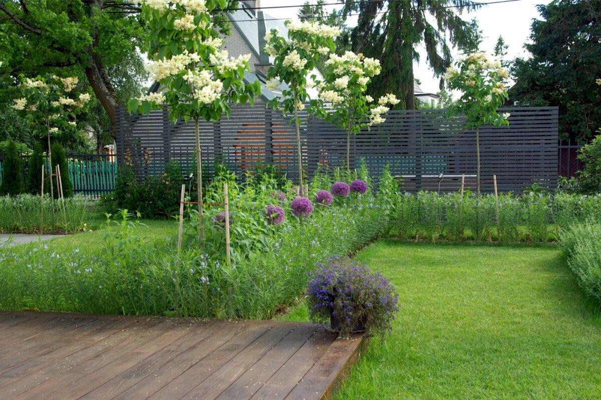 Hekk ei pea alati aeda piirama. Pooleldi õhuline puidust sõrestiksein annab kohese privaatsuse ja mõjub dekoratiivse taustana kõigele, mis ta ette jääb. Terrassi ja sõrestiku vaheline ala on jagatud erinevateks aiaruumideks püsikute ja puuvormis sirelitega. Õisi jagub siin nii kevadel, suvel kui ka sügisel.