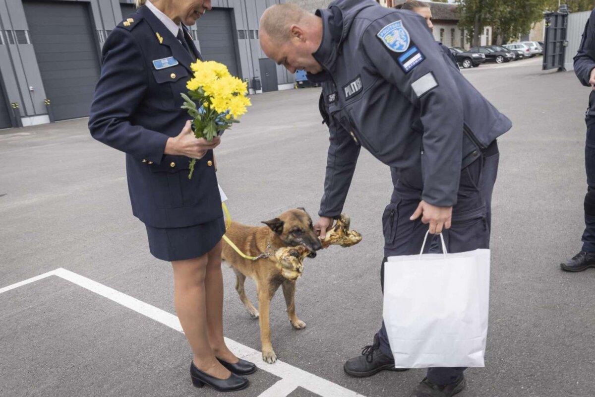 Teenistuskoerad siirduvad väljateenitud pensionile