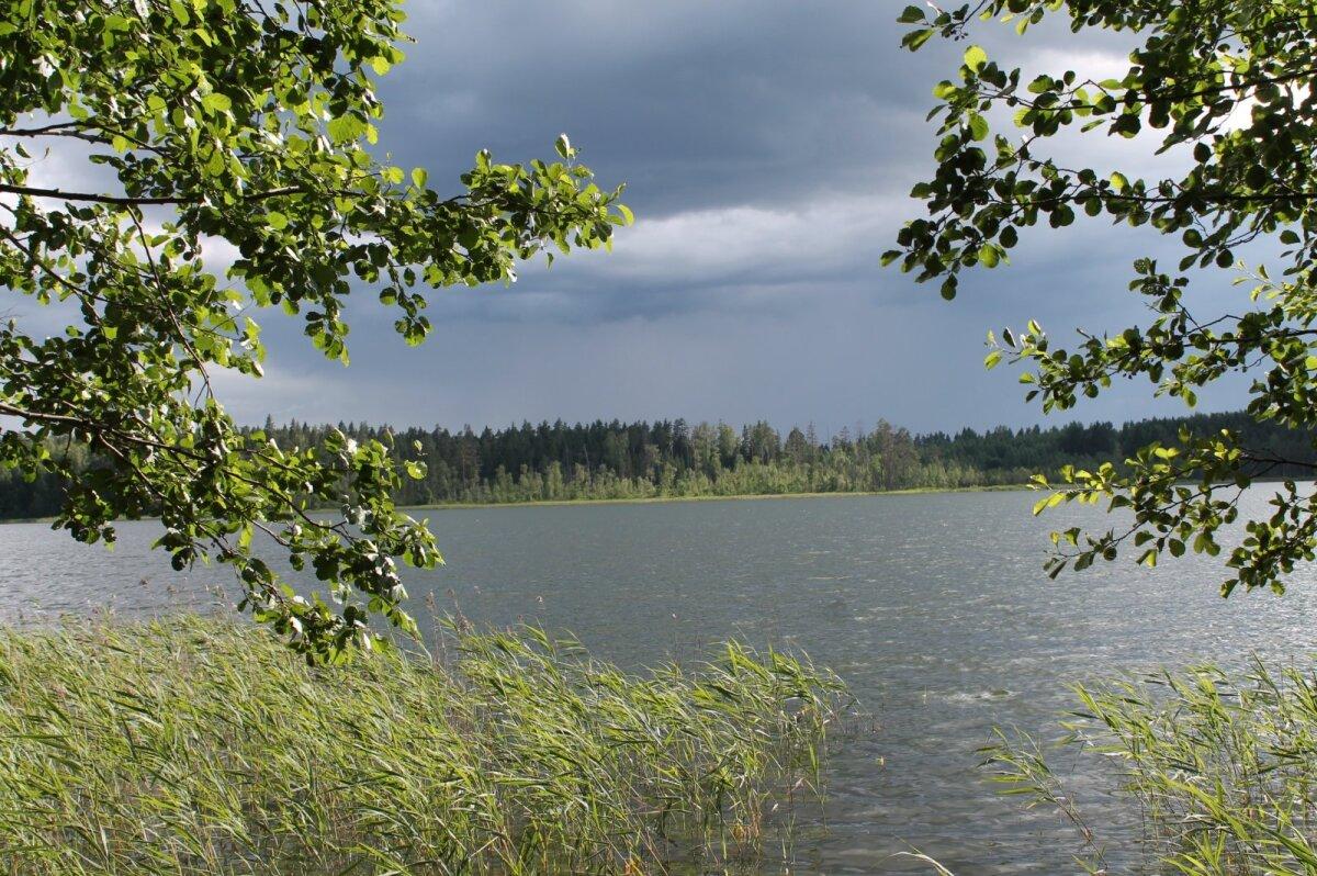 Vaade Hino järvele Kimalase metsamaja juurest.