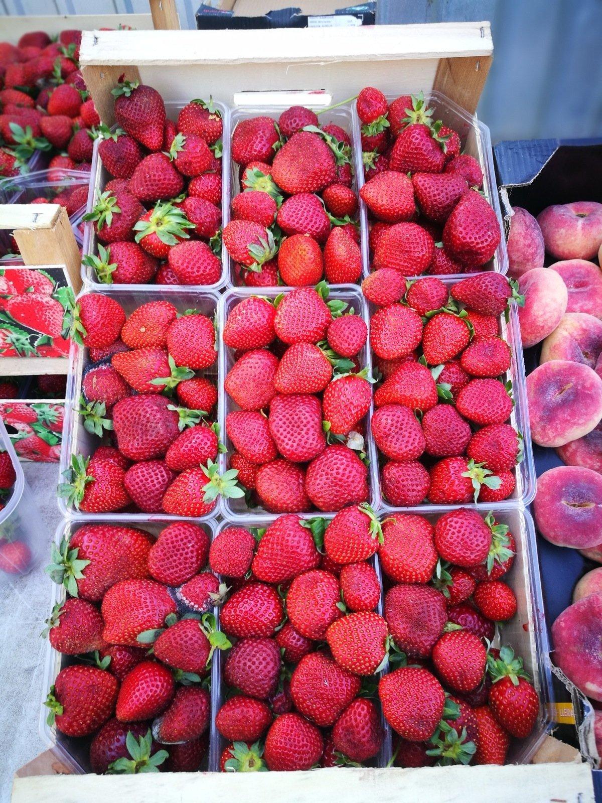 Maasikad Keskturul