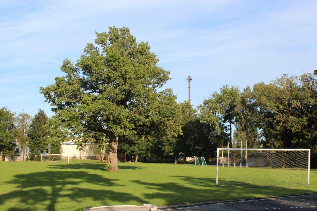 Tamm Orissaare staadionil.