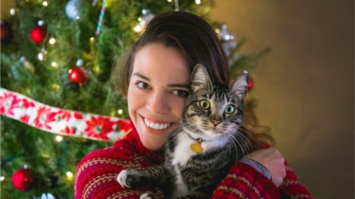 Если же все приведенные выше советы не слишком вас воодушевили, то вот самый проверенный способ справиться с грустью: заведите кота или попросите кого-нибудь вам его подарить