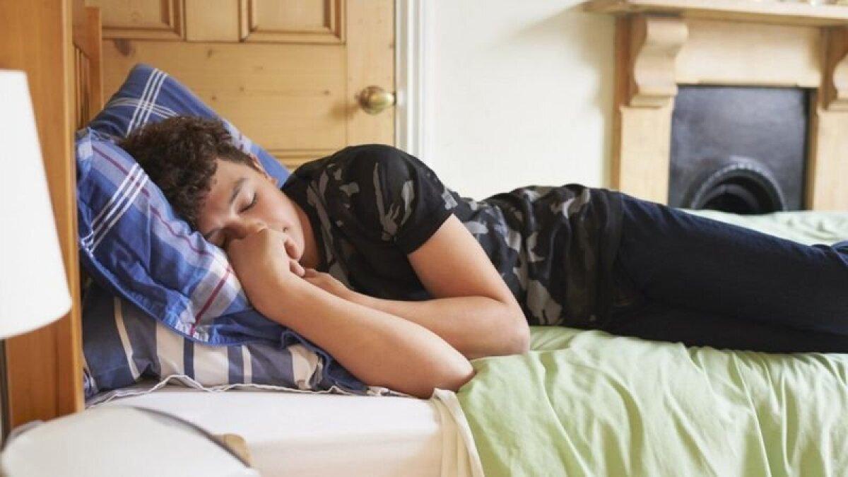 Оказывается, днем спят не от лени, а потому что хронотип такой