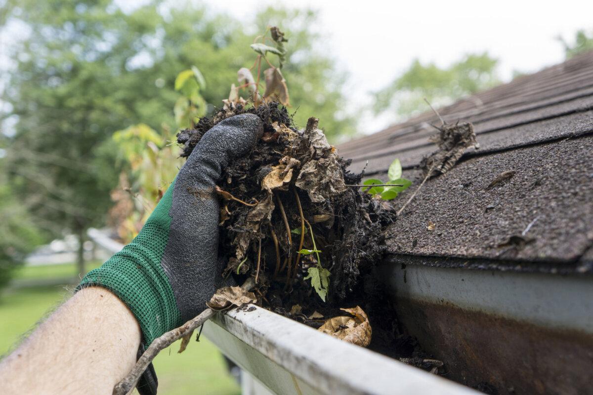 Vihmaveerennidesse kogunev praht kahjustab lõpuks renne.