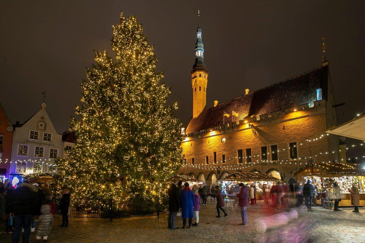 Jõulupuu Tallinna Raekoja platsil
