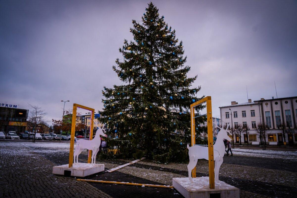 Rakvere jõulupuu