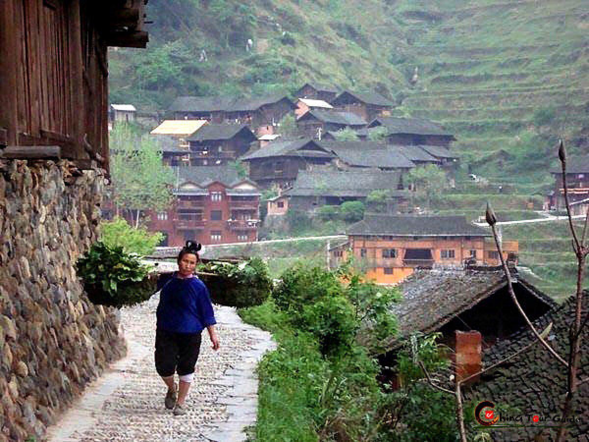 Xijiang Mao