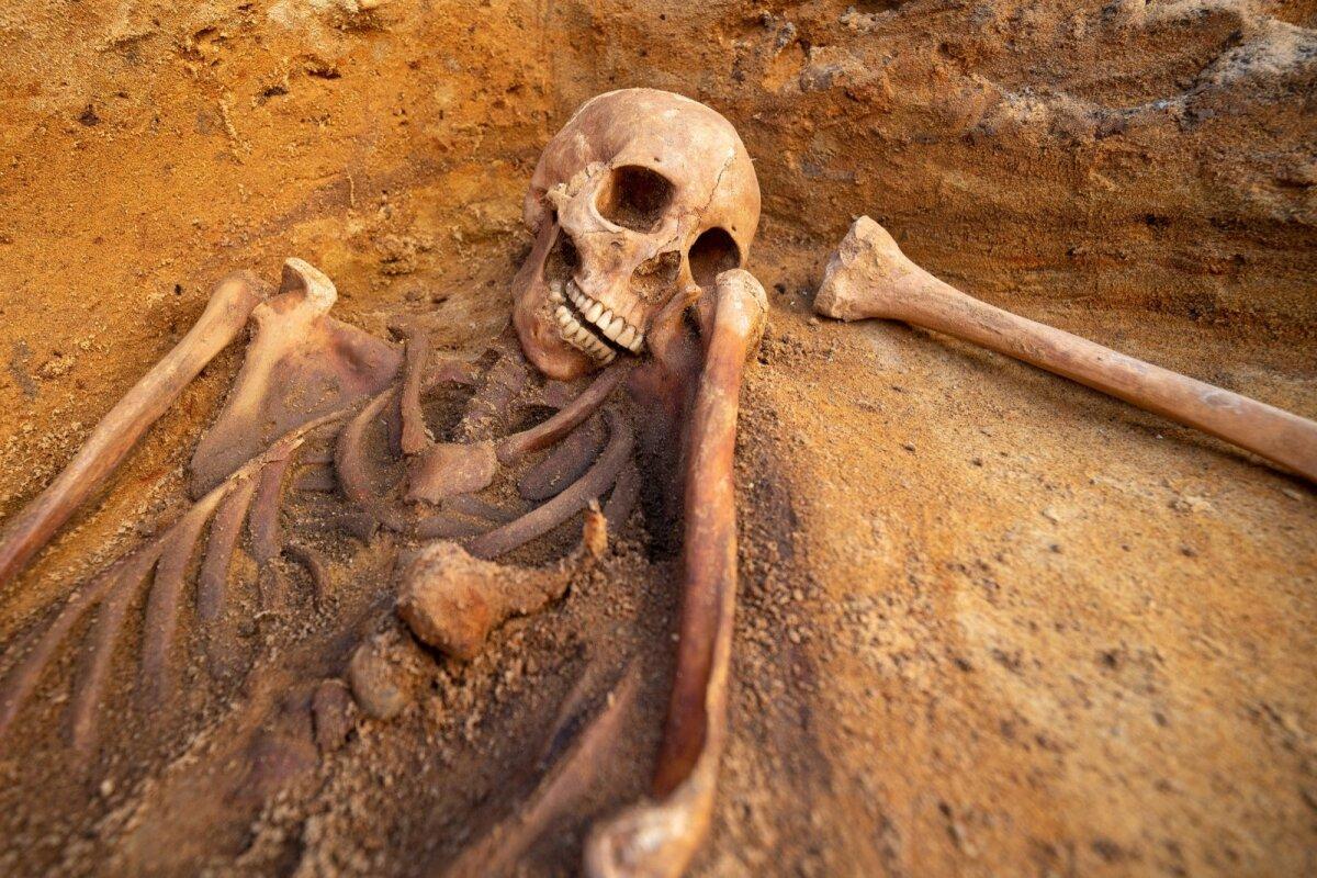 На данный момент в ходе раскопок на улице Татари обнаружено 10 скелетов. По всей вероятности, люди стали жертвами эпидемии чумы.