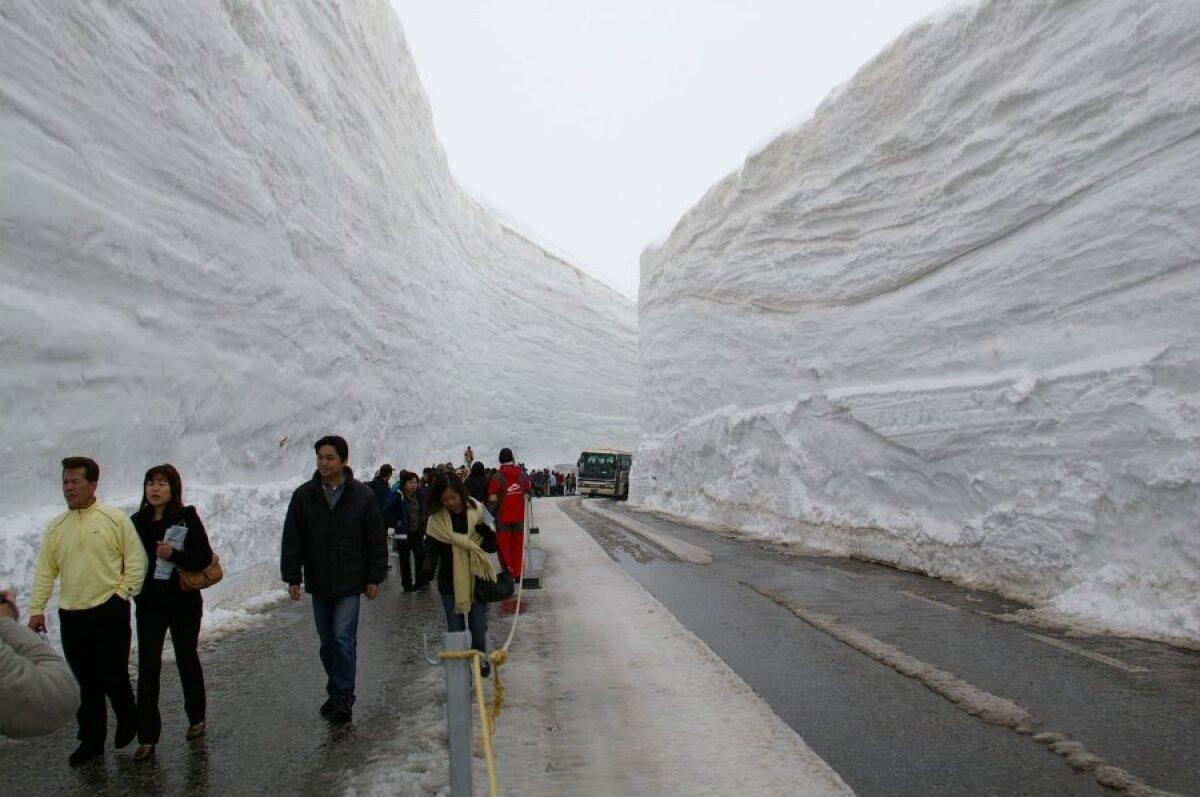 2006 oli eriti lumerohke: 19 meetrit lumemüüri.