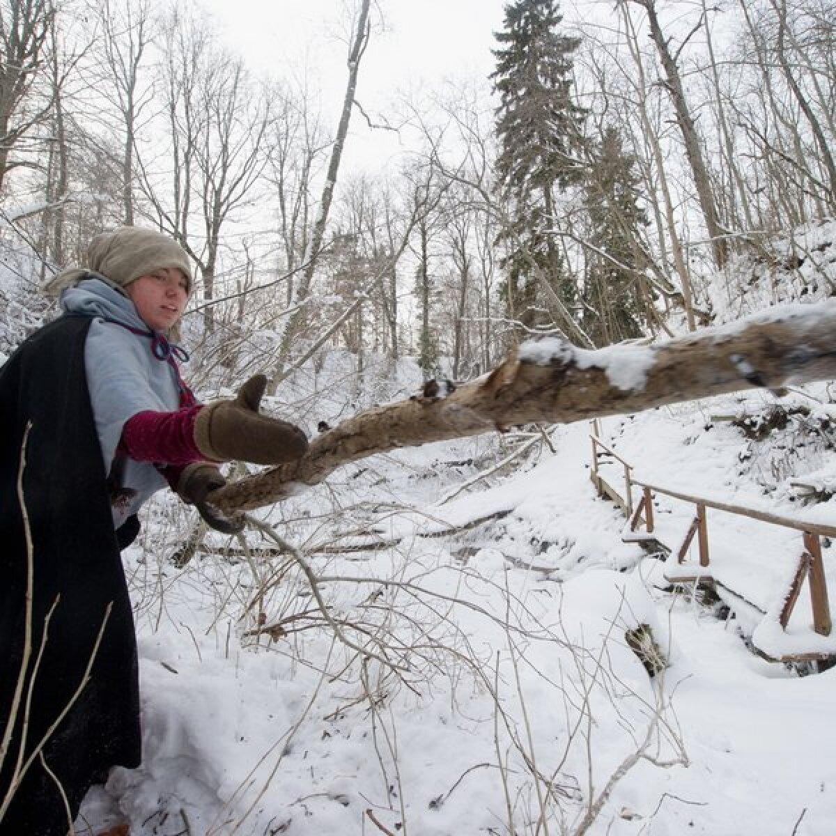 Kristin Otti on  paarisaja meetri kaugusel talust maalilises Ööbikuorus puid otsimas.Puid käivad otsimas nii mehed kui naised.  Puid lume alt välja kaevata ei ole kerge töö.