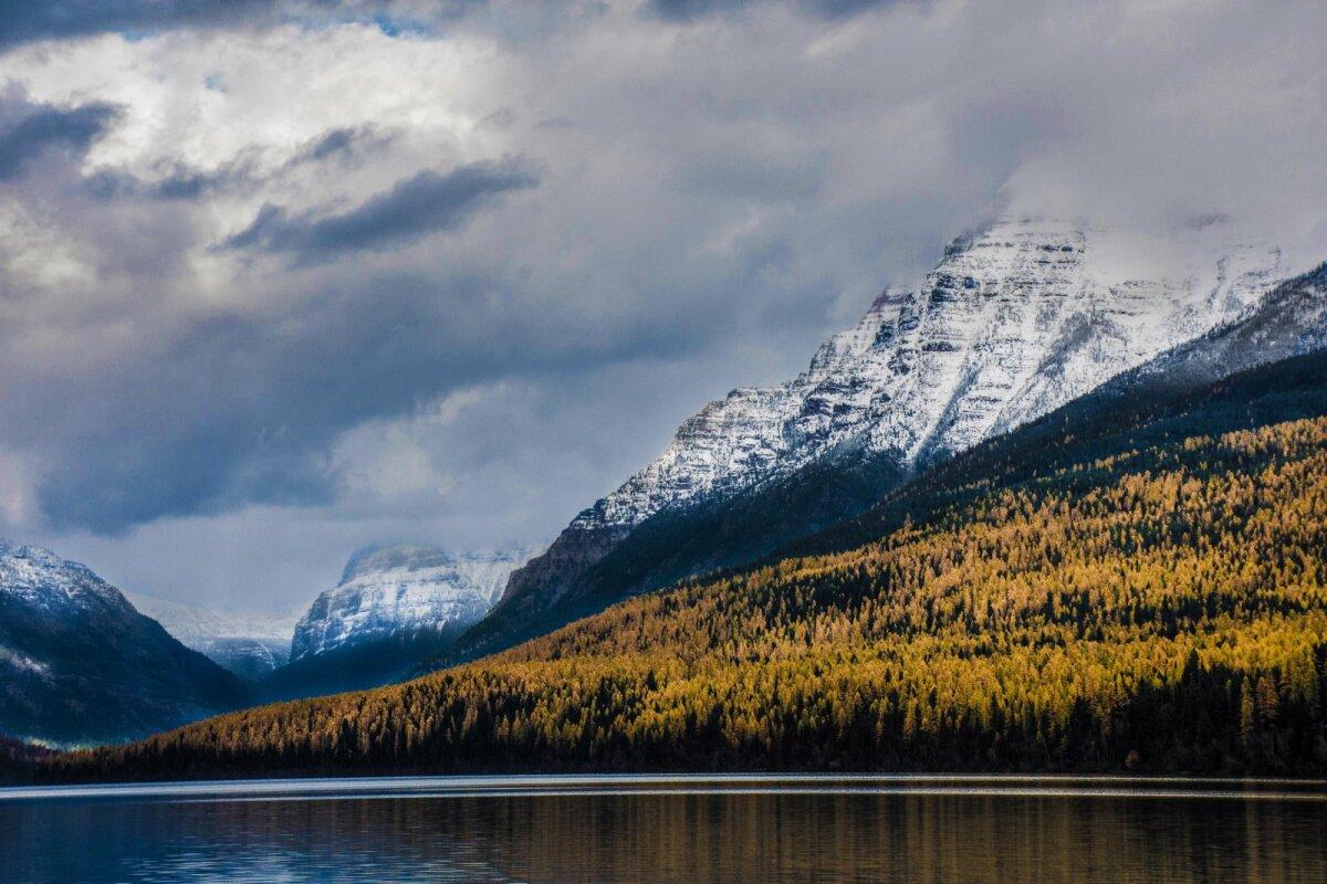 Glacieri rahvuspark