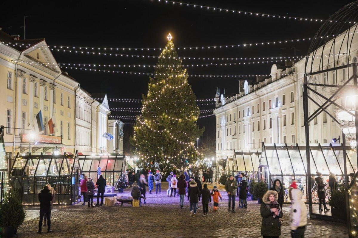 Jõulukuusk - Tartu