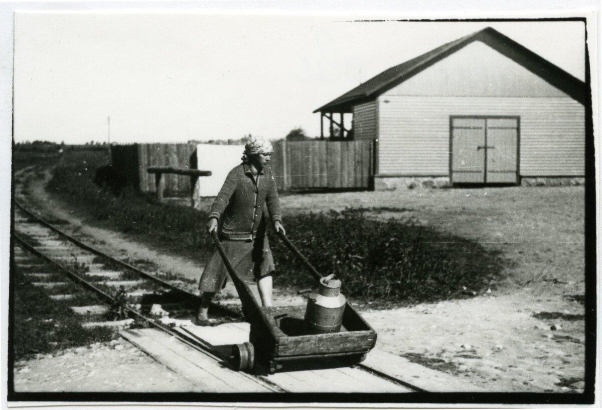 Naine käruga raudteel piimanõusid vedamas.
