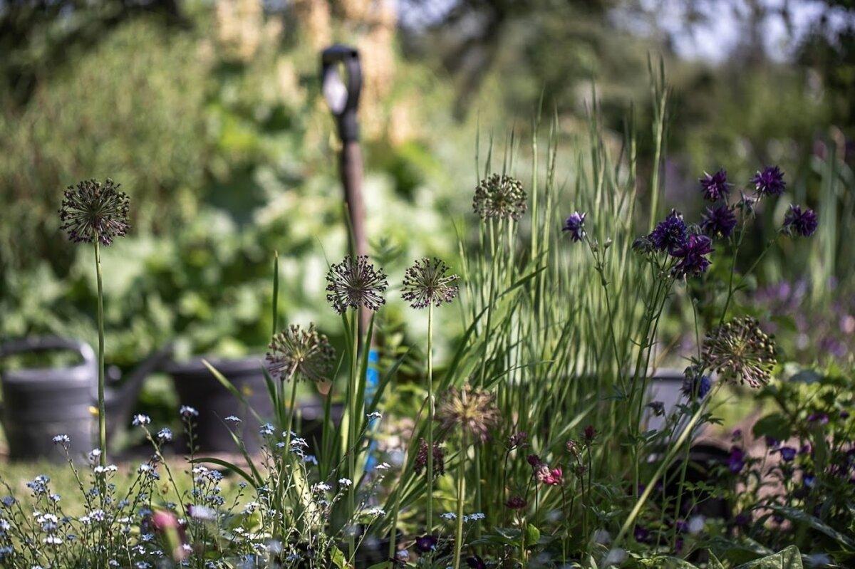 Ka elurikkas aias tuleb teha aiatöid.
