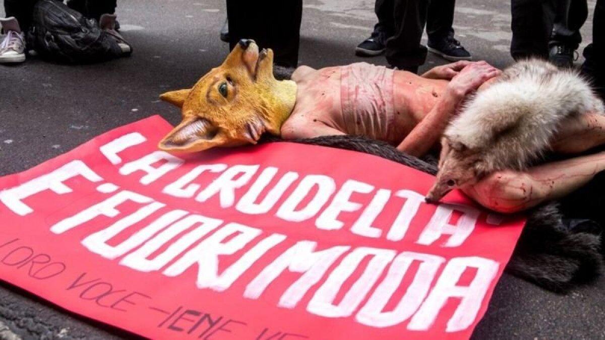 """""""Жестокость вышла из моды"""" - гласит плакат активистов-защитников прав животных на Миланской неделе моды в феврале 2018 года"""