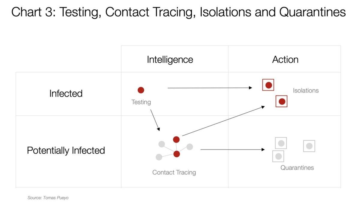 Testimine, kontaktsete otsimine, isoleerimine ja karantiinid.