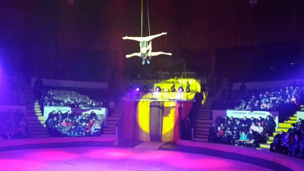 Новогоднее представление для детей вДонецком цирке