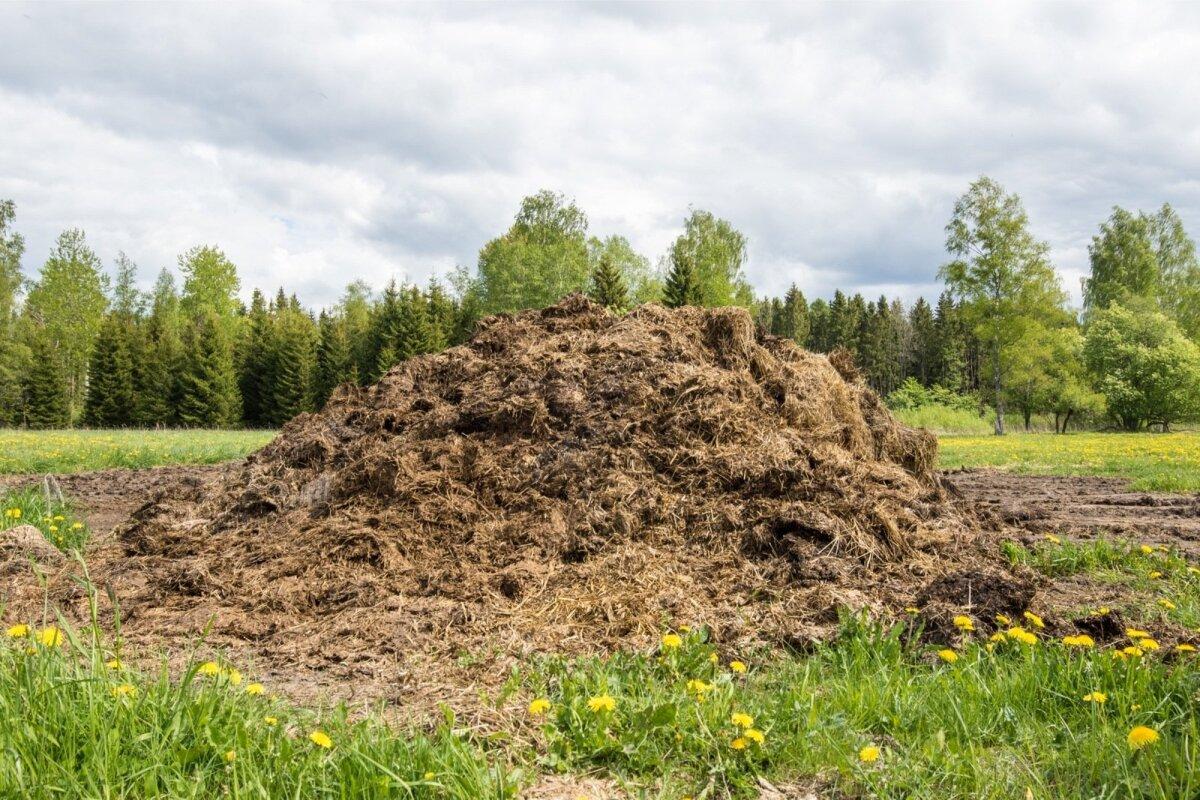 Anduritega saab mõõta, kui palju on mulla toitainete sisaldus suurenenud näiteks pärast sõnnikuvedu.