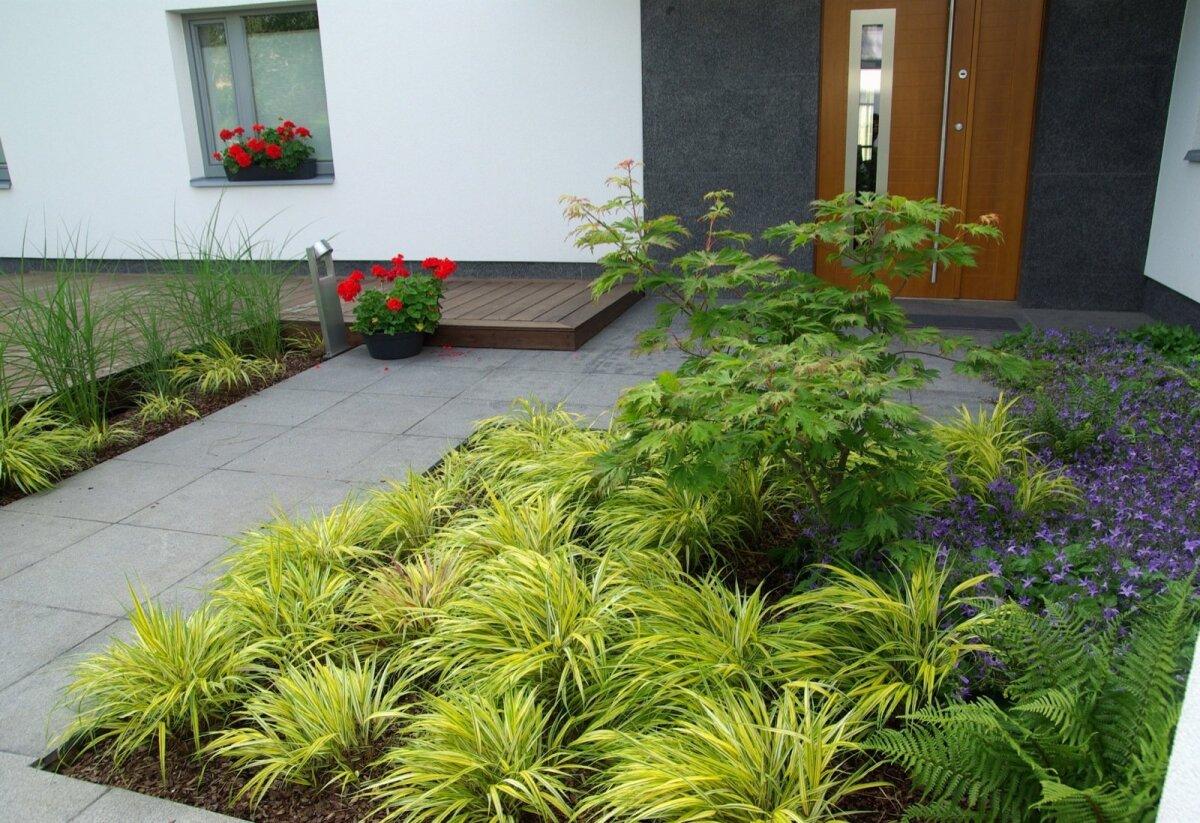 Rõõmsat kollast leiab kõrrelistes palju, see paneb aia särama. <em>Hakonechloa macra</em> 'Aureola' (ainuroog 'Aureola') armastab veidi niiskemat ja pigem poolvarjulist ala ning võib pärast istutamist veidikeseks mõtlema jääda, kuid paari aastaga saab sellest kauni kujuga väärikas taim.