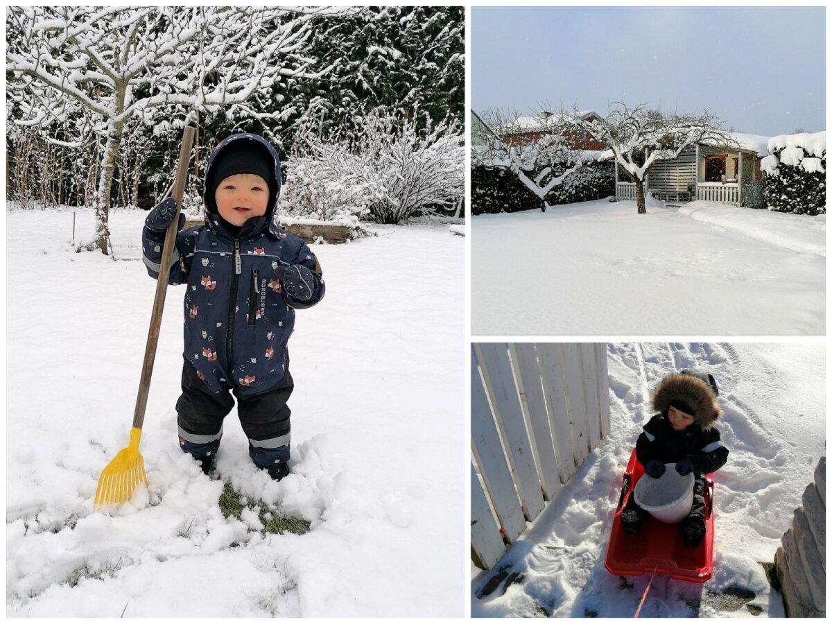Abiaedniku töine talv