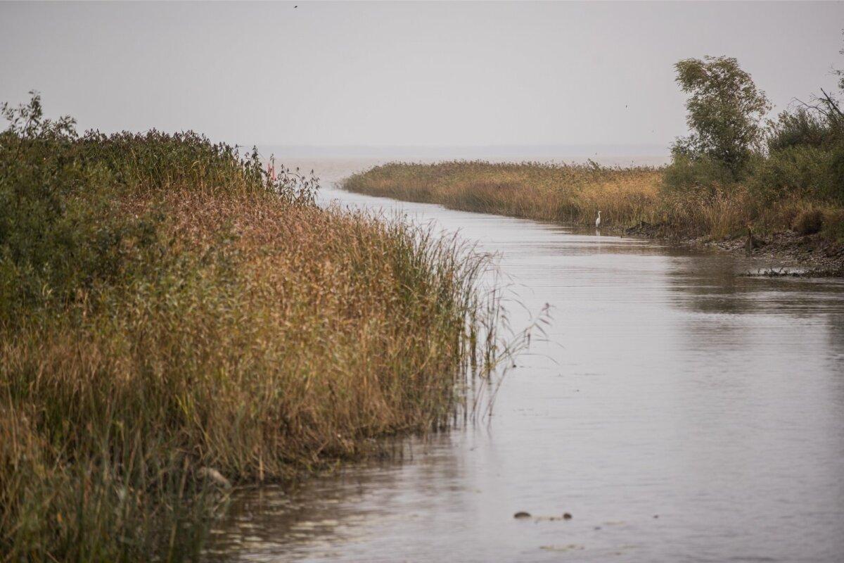 Mitmegi järvekaluri tee püügile algab n-ö oma kraavist.