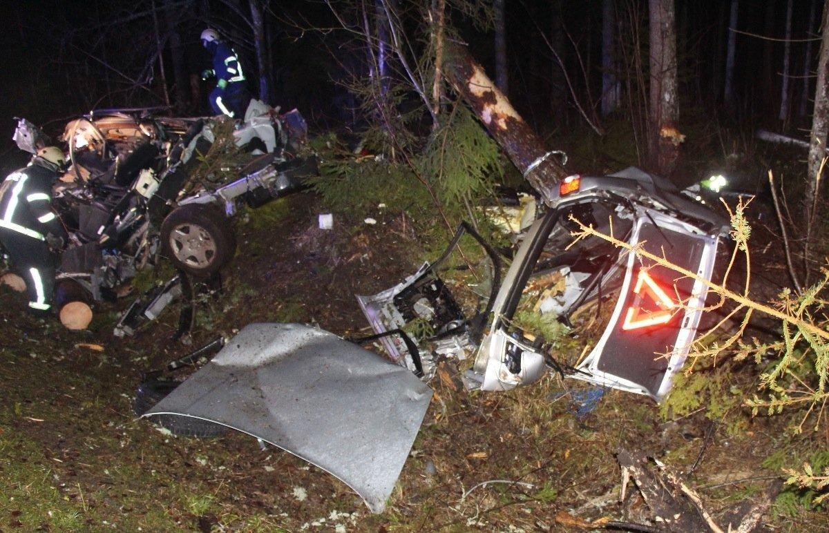 5. jaanuar, Tartumaa. Avastati teelt välja sõitnud Audi A8 vrakk, mille juures oli 29-aastase mehe surnukeha. Politsei selgitas, et esialgsetel andmetel kaotas autojuht suurel kiirusel sõiduki üle kontrolli.