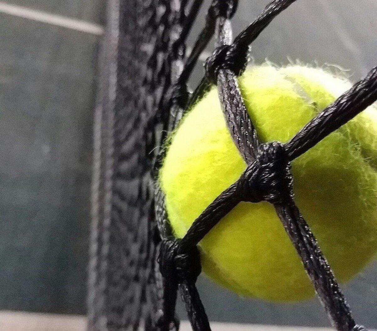 Tennisepall võrgus