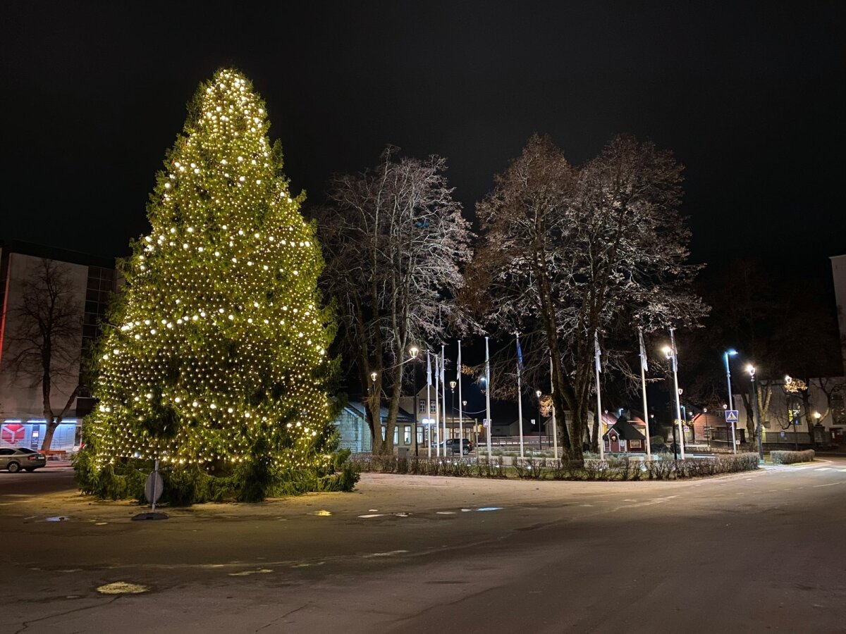 Paide jõulupuu